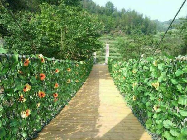 木质必威国际官方网站
